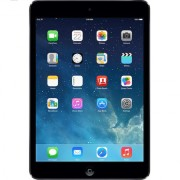Port Norris-ipad-mini-2-repair